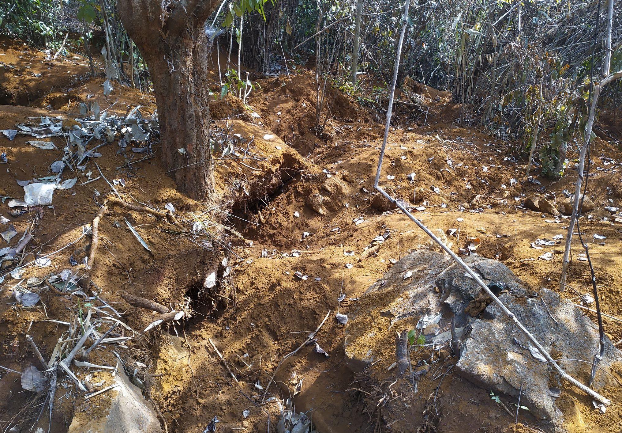 လိပ်ကျောက်တူးဖော်မှုကြောင် ငွေပျော်စံပြကျေးရွာ သစ်တော ဧက ၁၀ ကျော် ပျက်စီး